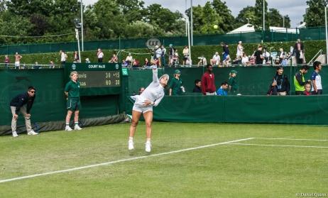 Wimbledon-8454