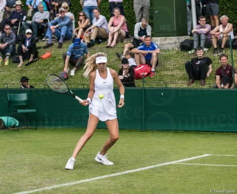 Wimbledon-8534