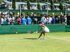 Wimbledon-8976